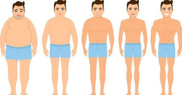 Body fat percentage